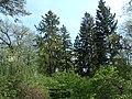 Bila Tserkva, Kyivs'ka oblast, Ukraine - panoramio (60).jpg