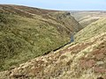 Birchen Clough - geograph.org.uk - 1496892.jpg