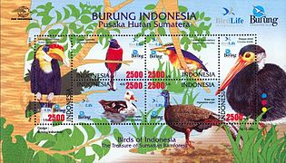 Birds of Indonesia 2009.jpg
