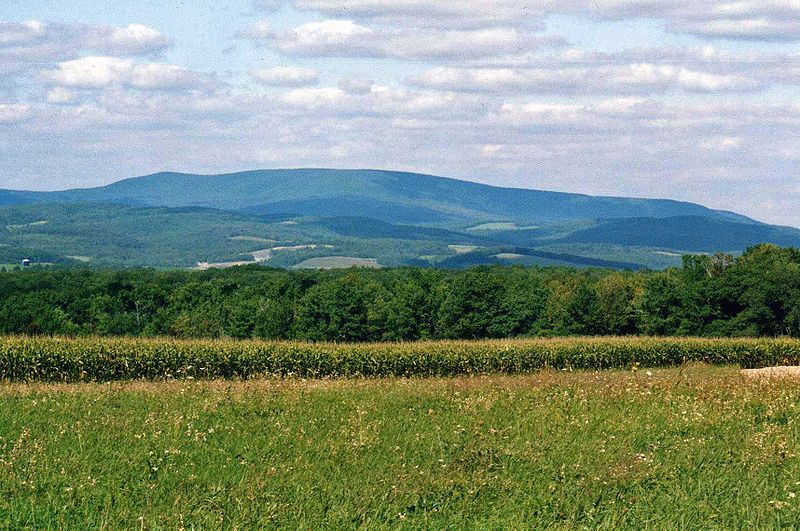 Blue Knob Mountain 1.jpg
