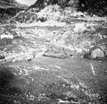 Bohinjska planina na Kraju. Krave odhajajo na pašo zjutraj ob 6h 1952 (3).jpg
