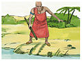 Book of Exodus Chapter 9-11 (Bible Illustrations by Sweet Media).jpg