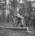 Bosbewerking, arbeiders, boomstammen, bomen vellen, Bestanddeelnr 251-9304.jpg