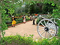 Botanical Gardens - Ootacamund (Ooty) - India 01.JPG