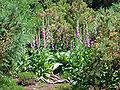 Botanischer-garten-ffm007.jpg
