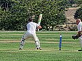 Botany Bay CC v Rosaneri CC at Botany Bay, Enfield, London 2.jpg