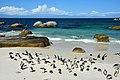 Boulders Beach, Simon's Town, Cape Town, Jihoafrická republika - panoramio.jpg