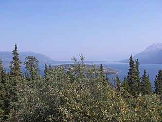 Bove Island, Tagish Lake, Yukon 5.jpg