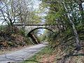 Brücke Riepelsiepen 1.jpg