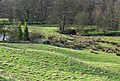 Bradbourne Brook - geograph.org.uk - 320576.jpg