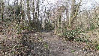 Bramley Bank - Path in Bramley Bank