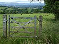 Bridleway gate, near Nantcwnlle, Ceredigion - geograph.org.uk - 914863.jpg