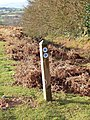 Bridleway marker post on Clee Liberty Common - geograph.org.uk - 659878.jpg