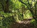 Bridleway to Creegbrawse - geograph.org.uk - 1314098.jpg