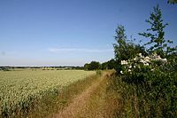 Bridleway to Stanningfield - geograph.org.uk - 195794