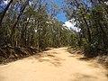 Brooman NSW 2538, Australia - panoramio (110).jpg