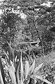 Brugherstel. Opname van bovenaf, Bestanddeelnr 6561.jpg