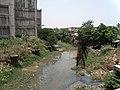 Buckingham Canal near Thiruvanmiyur.JPG