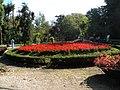 Bucuresti, Romania, Parcul Cismigiu; B-II-a-A-19655 (3).JPG