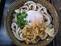 Bukkake udon by Ozchin.jpg
