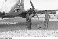 Bundesarchiv Bild 101I-786-0344-17A, Flugzeug Caproni Ca 309
