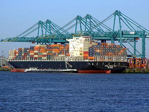 Bunga Seroja Dua IMO 9315381, Port of Antwerp 19Dec2008.JPG