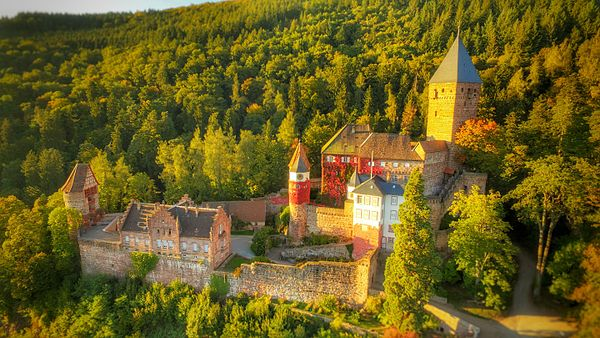 Burg Zwingenberg 2015-10-02.jpeg