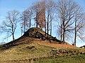 Burg erstmals erwähnt 1366 - panoramio.jpg