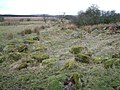 Burial Ground between Malling Farm and Nether Shannochill - geograph.org.uk - 333247.jpg