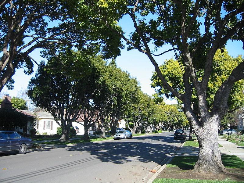 File:Burlingame city of trees.JPG