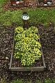 Buseck - Tierfriedhof Kernberg 12 ies.jpg
