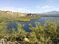 Butcher Jones Trail - Mt. Pinter Loop Trail, Saguaro Lake - panoramio (124).jpg