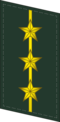 CAPF-Collar-0713-CPT.png