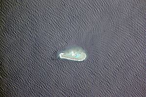 Conway Reef Wikipedia