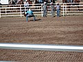 CFD Tie-down roping J.D. McCuistion No.2.jpg