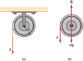 CNX UPhysics 10 08 Pulley.png