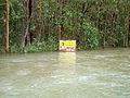 CSIRO ScienceImage 10565 Flood in development area northern Queensland.jpg