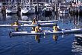 CSIRO ScienceImage 2442 Sea Kayaking.jpg