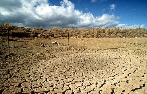 CSIRO ScienceImage 429 Drought Effected Landscape