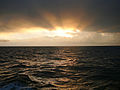 CSIRO ScienceImage 8209 Sunset over the Tasman Sea.jpg