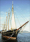 Photograph of the schooner C.A. Thayer at dock, sails furled, with tall masts reaching to a clear sky.