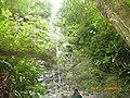 Cachoeira da Anibal - panoramio.jpg