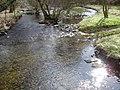 Caddon Water - geograph.org.uk - 735903.jpg
