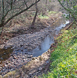 Calabazas creek above sonoma creek cm hogan.jpg