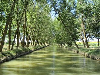 Canal de Castilla - Canal of Castile in Medina de Rioseco.