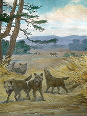 Painting of five dire wolves