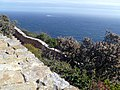 Cape of Good Hope - Cape Town, South Africa (5591974951).jpg