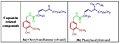 Capsacin related compounds.jpg