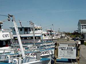 English: Charter fishing boats at Captree Stat...