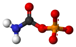 Carbamoyl-phosphate-dianion-3D-balls.png